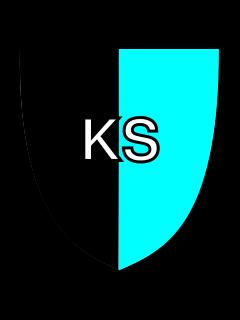 Клуб Kolomna Stars
