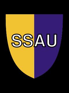 Клуб FC SSAU 2007