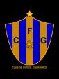 badge.php?team_id=355199&sport=soccer&location=team_main