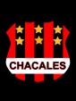 badge.php?team_id=355937&sport=soccer&location=team_main